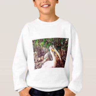 pelicans sweatshirt