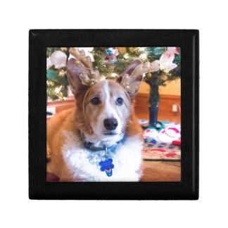 Pembroke Welsh Corgi Christmas Gift Box