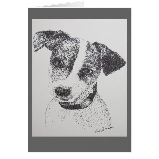 Pen and Ink drawing of Jack Russell Greeting Card