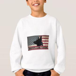 PEN Flag Sweatshirt