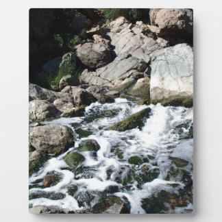 Penasquitos Waterfall Plaque
