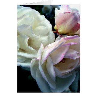 Penelope Roses Greeting Card