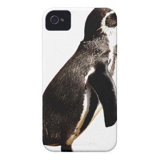 Penguin Animal iPhone 4 Covers