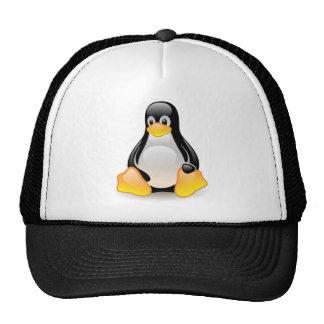 Penguin baby cute cartoon illustration, gift cap