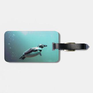 Penguin Bag Tag