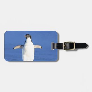 Penguin Bird Feathers Black White Personalize Name Luggage Tag