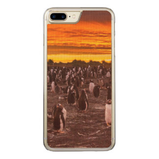 Penguin colony at sunset, Falkland Carved iPhone 7 Plus Case