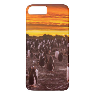 Penguin colony at sunset, Falkland iPhone 7 Plus Case