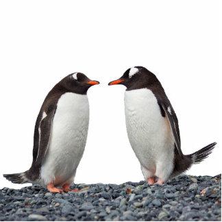 Penguin Couple Standing Photo Sculpture