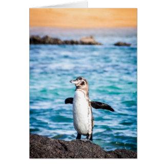 Penguin on Bartolome Island Card