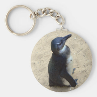 Penguin on sand basic round button key ring