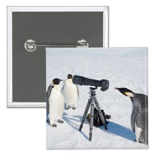 Penguin Photographer - button