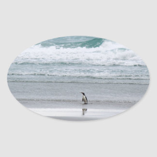 Penguin returning from the ocean oval sticker
