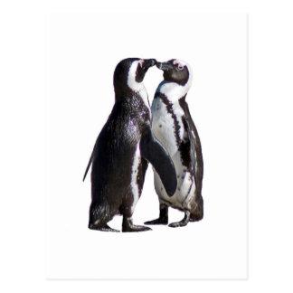 Penguin Romance Postcard