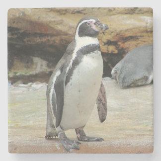 Penguin Standing Alone Stone Beverage Coaster