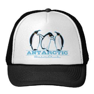 Penguin Swimming Trucker Hats