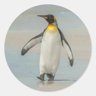 Penguin walking on the beach classic round sticker