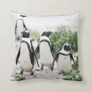 Penguins at the beach cushion
