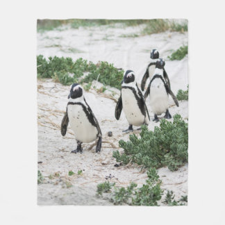 Penguins at the beach fleece blanket