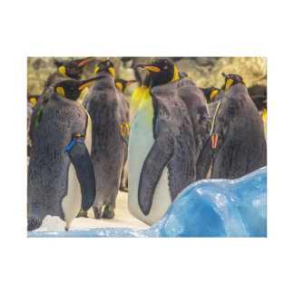 Penguins at the zoo canvas print