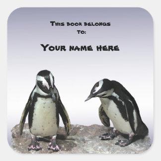 Penguins Bookplate Square Sticker