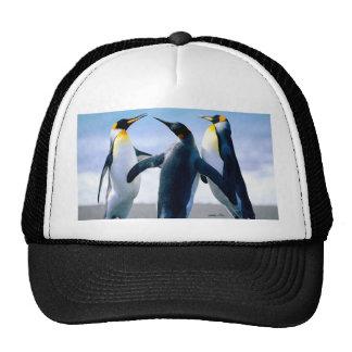 Penguins Mesh Hats