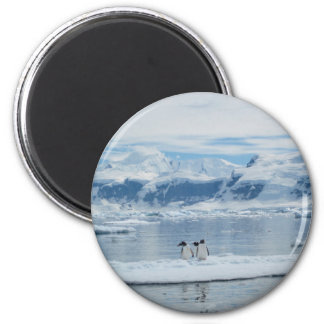 Penguins on an iceberg 6 cm round magnet
