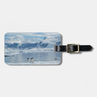 Penguins on an iceberg bag tag