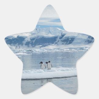 Penguins on an iceberg star sticker
