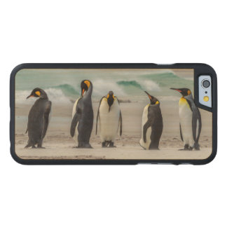 Penguins preening on beach carved maple iPhone 6 case
