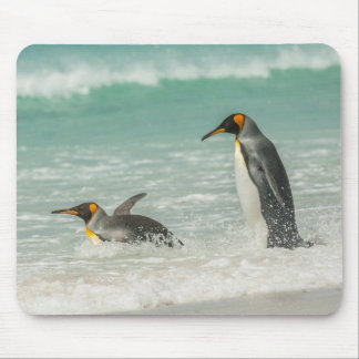Penguins swimming on the beach mouse pad