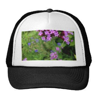 Penland Purple Flower: Sallie by My Side Cap