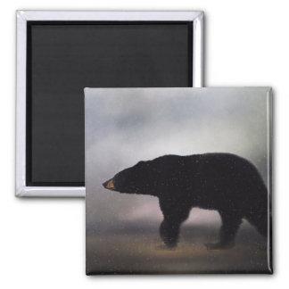Pennsylvania Black Bear in Winter Magnet