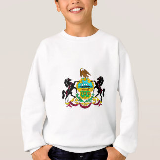 Pennsylvania Flag Theme 00 Sweatshirt