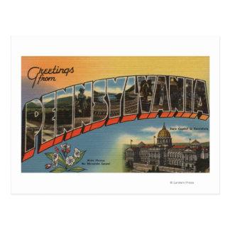 Pennsylvania (State Capital/Flower) Postcard