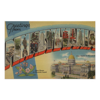 Pennsylvania (State Capital/Flower) Poster