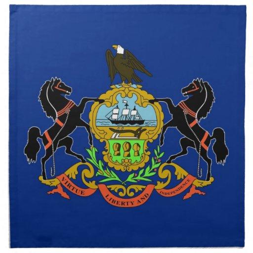 Pennsylvania State Flag American MoJo Napkin