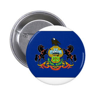 Pennsylvania State Flag Pins