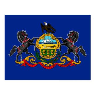 Pennsylvania State Flag Design Postcard