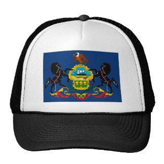 Pennsylvania State Flag Detail Hats