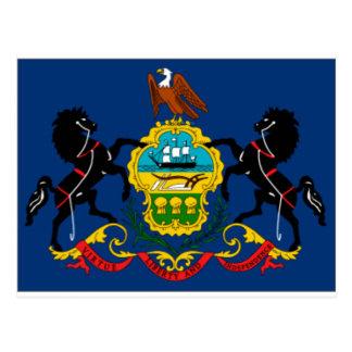 Pennsylvania State Flag Detail Postcard