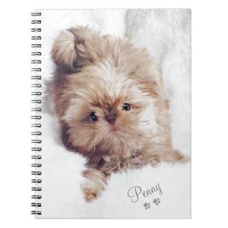 Penny the orange liver Shih Tzu on Cloud 9 tablet Notebook