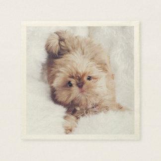 Penny the orange liver Shih Tzu puppy napkins Disposable Serviette