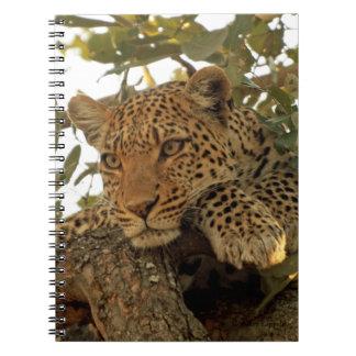 Pensive Leopard Journal Notebook