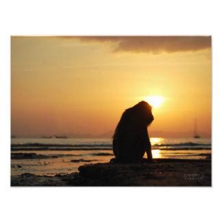Pensive Monkey // Krabi, Thailand Photographic Print