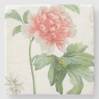 Peony, 1799 (colour stipple print) stone coaster