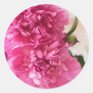 Peony Flowers Close-up Sketch Classic Round Sticker