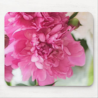 Peony Flowers Close-up Sketch Mouse Pad