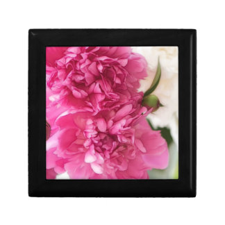 Peony Flowers Close-up Sketch Small Square Gift Box