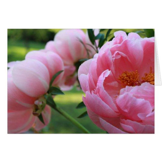 Peony Garden3 Card